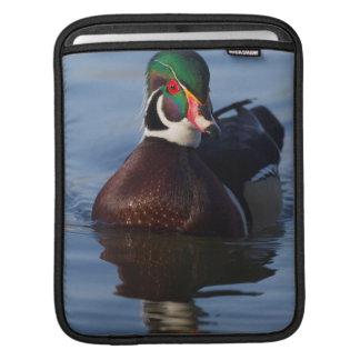 Wood Duck Drake 2 iPad Sleeve