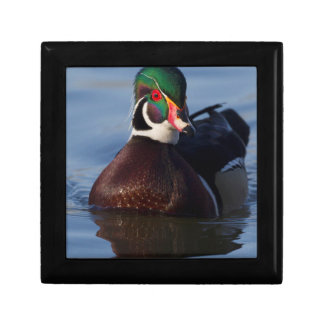 Wood Duck Drake 2 Small Square Gift Box
