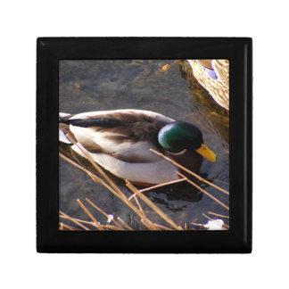 Wood Duck Gift Box