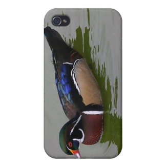 Wood Duck Hard Shell Case for iPhone 4/4S