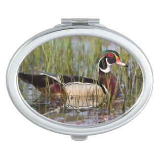 Wood Duck in wetland Vanity Mirrors