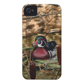 Wood Duck iPhone 4 Case-Mate Cases