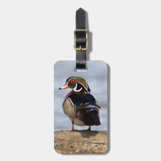 Wood Duck male on log in wetland Luggage Tag
