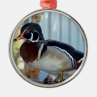 Wood Duck (Mississippi) Christmas Ornament