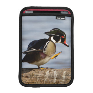 Wood Duck on log in wetland iPad Mini Sleeve