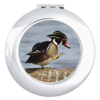 Wood Duck on log in wetland Mirror For Makeup