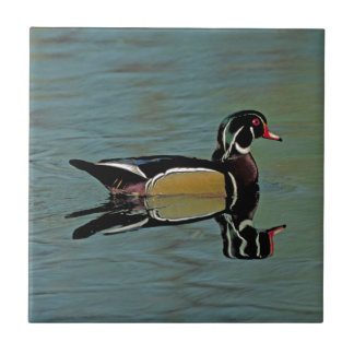 Wood Duck Photo Tile