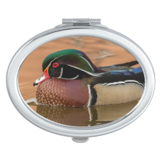 Wood duck swimming in water mirror for makeup