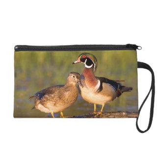 Wood Ducks and female on log in wetland Wristlet Purse