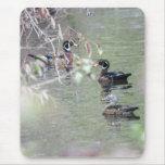 Wood Ducks Mouse Pad