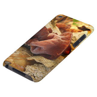 Wood Eared Mushroom Barely There iPod Case