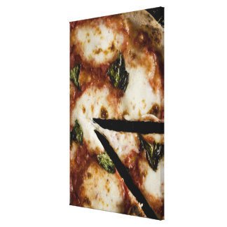 wood-fired cheese pizza canvas print
