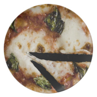 wood-fired cheese pizza party plates