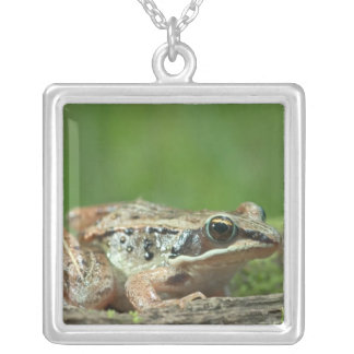 Wood frog. Rana sylvatica Silver Plated Necklace