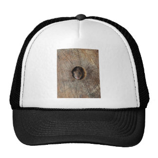 Wood Mouse Mesh Hats
