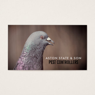 Wood Pigeon, Pest Control Business Card