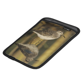Wood Sandpiper, Tringa glareola,adult, Samos, iPad Mini Sleeve