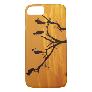 Wood Stork, Mycteria americana,adults at iPhone 8/7 Case