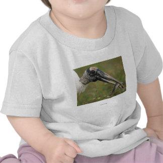 Wood Stork T Shirts