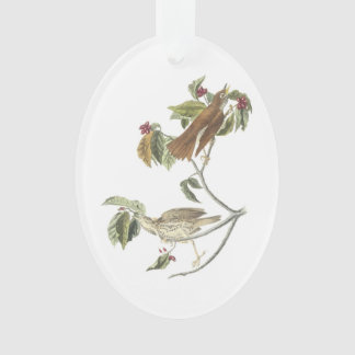 Wood Thrush by Audubon Ornament