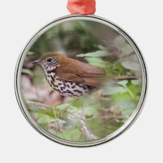 Wood Thrush Silver-Colored Round Decoration