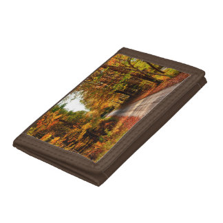 Wood trail with fall foliage trifold wallet