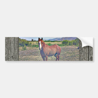 Wood Window Horse 3 Bumper Sticker