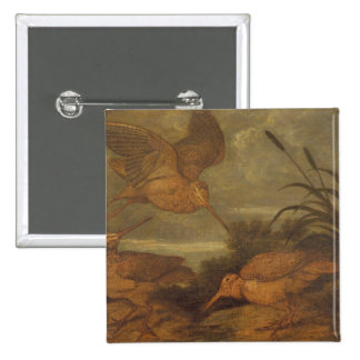 Woodcock at Dusk, c.1676 (oil on canvas) 15 Cm Square Badge