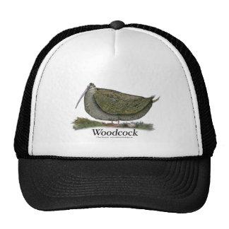 woodcock bird, tony fernandes cap