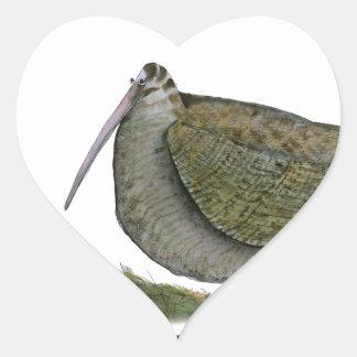 woodcock bird, tony fernandes stickers