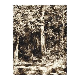 Woodcut Forest Canvas Prints