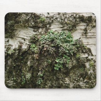 wooden bark mouse pads
