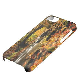 Wooden Bridge and Creek in Fall iPhone 5C Case