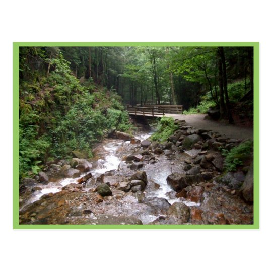 Wooden Bridge In The Forest With Water And Rocks Postcard