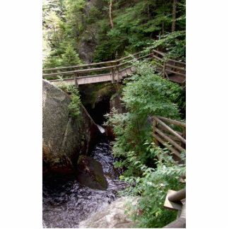 Wooden Bridge Over The Water In The Forest With Bi Photo Cutouts