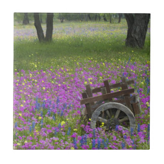 Wooden Cart in field of Phlox, Blue Bonnets Tile