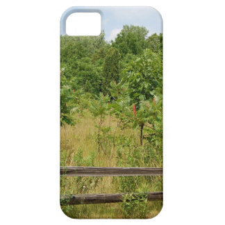 Wooden Fence and Meadow iPhone 5 Cases