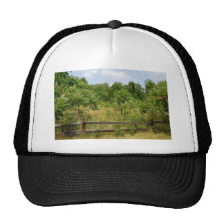Wooden Fence and Meadow Hat