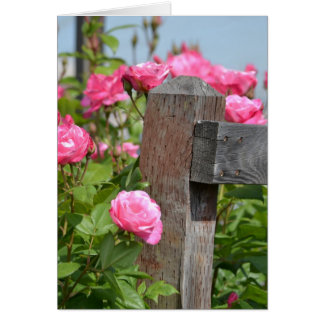 Wooden Fence and Roses Greeting Card