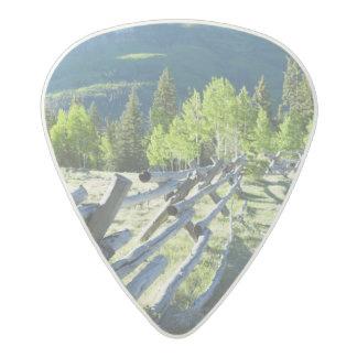 Wooden Fenceline Acetal Guitar Pick