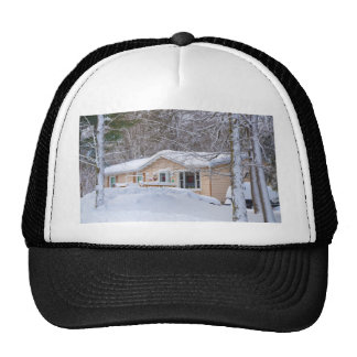 Wooden house in winter forest cap