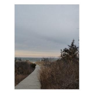 Wooden Path Postcard