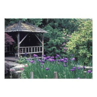 Wooden pavilion in the Sunken Garden in Photo Print