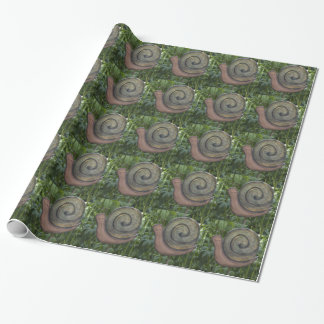 wooden snail in the garden wrapping paper