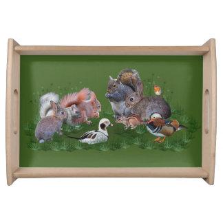 Woodland Animals Tray