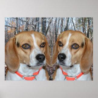 Woodland Beagles Poster