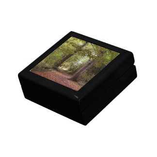 Woodland colors Gift Box
