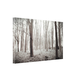 Woodland Dream Canvas Print