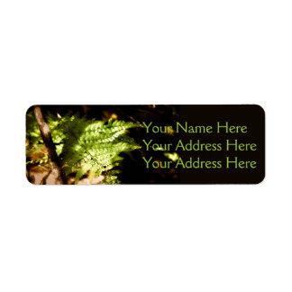 Woodland Ferns Return Address Label