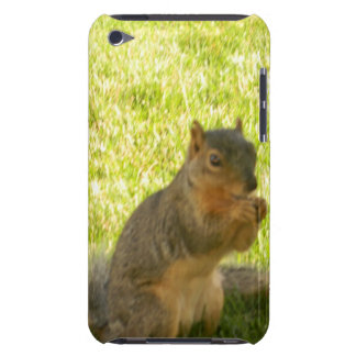 Woodland friend iPod touch cases